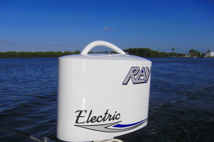 Ray Electric Outboards motor